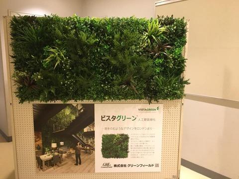 壁面緑化.jpg